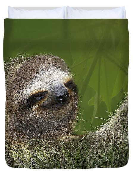 Three-toed Sloth Duvet Cover by Heiko Koehrer-Wagner