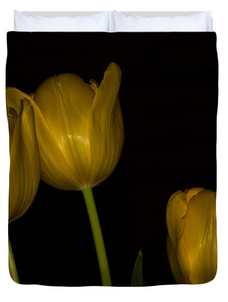 Duvet Cover featuring the photograph Three Tulips by Ed Gleichman