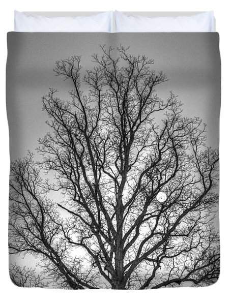 Through The Boughs Bw Duvet Cover by Dan Stone