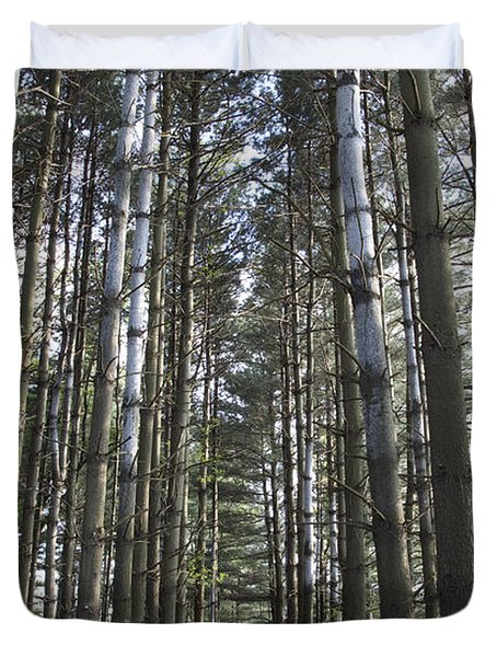 Through The Woods Duvet Cover by Jeannette Hunt