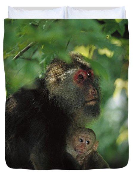 Tibetan Macaque Nursing Baby Duvet Cover by Cyril Ruoso