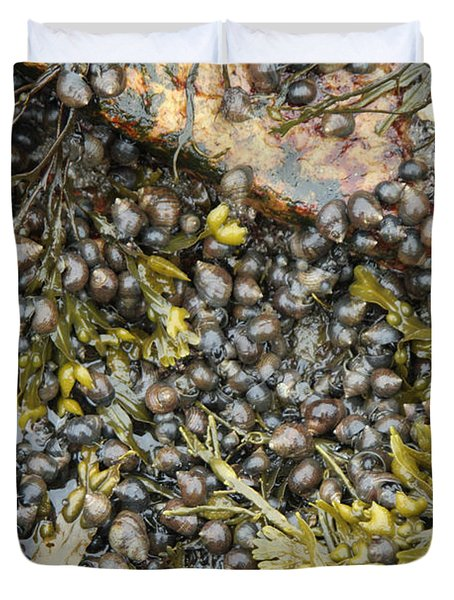 Tidal Pool With Rockweed Duvet Cover by Ted Kinsman