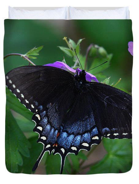 Duvet Cover featuring the photograph Tiger Swallowtail Female Dark Form On Wild Geranium by Daniel Reed