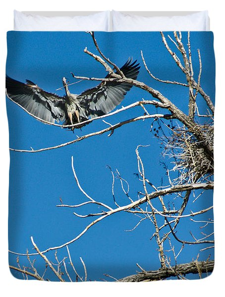 Time To Nest Duvet Cover by Colleen Coccia