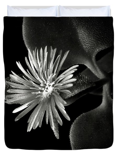 Tiny Ice Plant In Black And White Duvet Cover