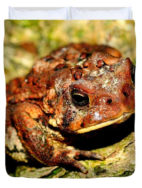 Duvet Cover featuring the photograph Toad by Joe  Ng