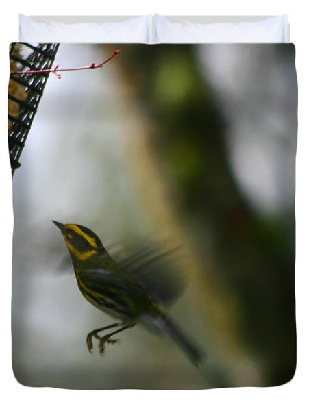 Townsend Warbler In Flight Duvet Cover by Kym Backland