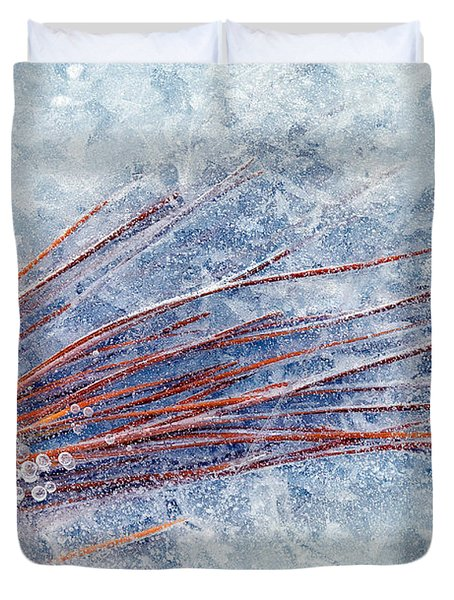 Trapped In Winter Duvet Cover by Mike  Dawson