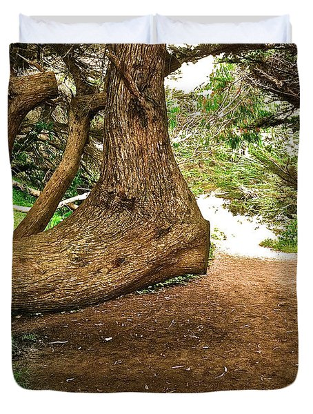 Duvet Cover featuring the photograph Tree And Trail by Bill Owen