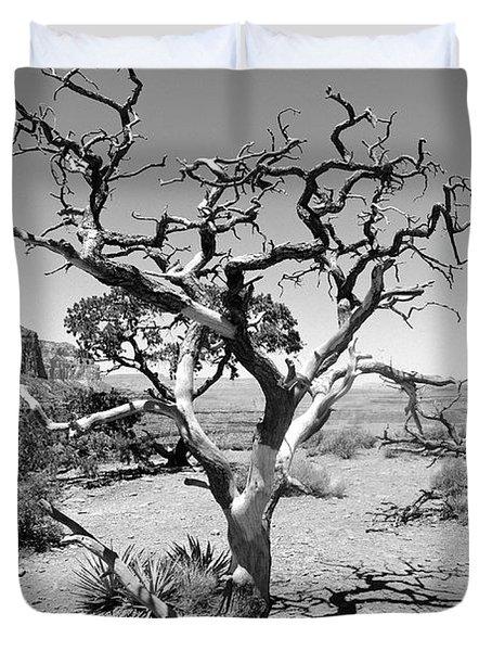 Tree At Cedar Ridge Bw Duvet Cover by Julie Niemela
