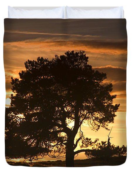 Tree At Sunset, North Yorkshire, England Duvet Cover by John Short