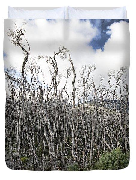 Tree Cemetery Duvet Cover