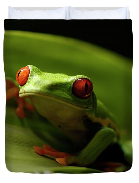 Tree Frog 10 Duvet Cover by Bob Christopher