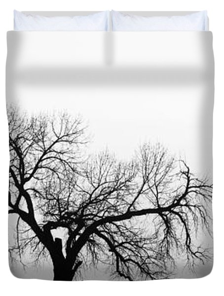 Tree Harmony Black And White Duvet Cover by James BO  Insogna