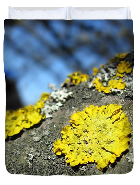 Duvet Cover featuring the photograph Tree Lichen by Ausra Huntington nee Paulauskaite