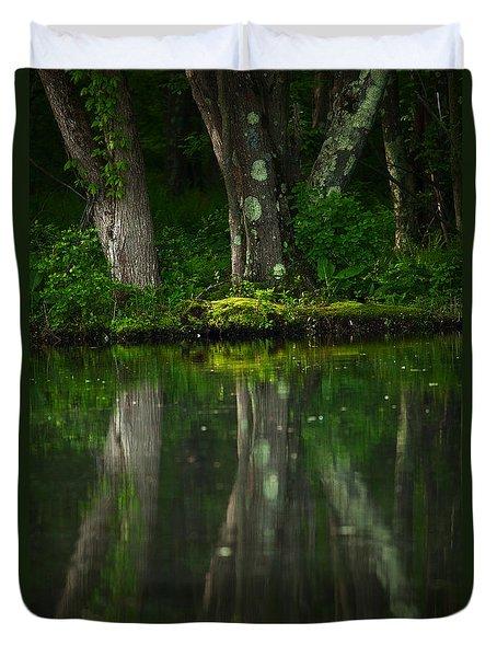 Tree Trunks Duvet Cover by Karol Livote