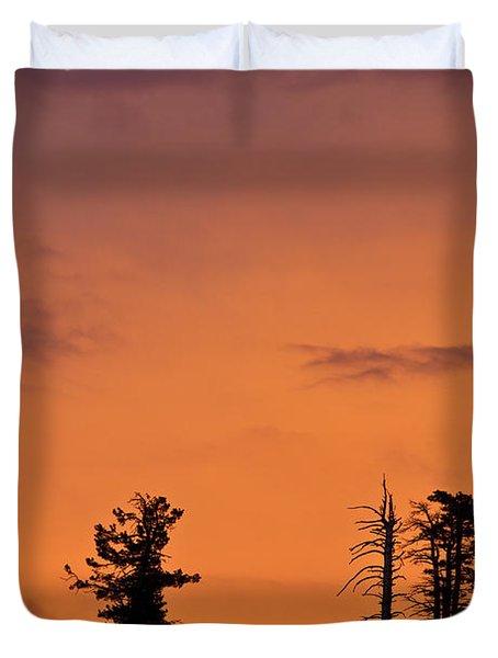 Trees At Sunset Duvet Cover