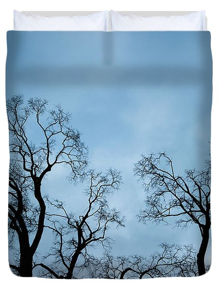 Trees. Autumn. Duvet Cover by Konstantin Dikovsky