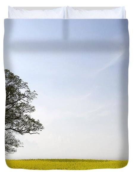 Trees In A Rapeseed Field, Yorkshire Duvet Cover by John Short