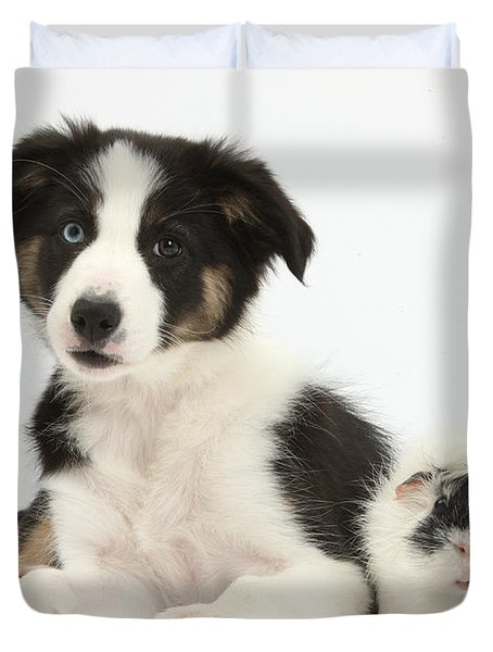 Tricolor Border Collie Pup And Guinea Duvet Cover by Mark Taylor