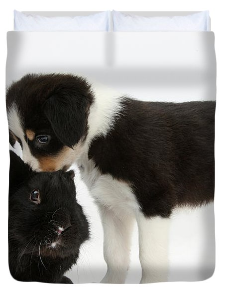 Tricolor Border Collie Pup With Black Duvet Cover by Mark Taylor