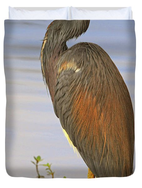 Tricolor Heron Duvet Cover by Dave Mills