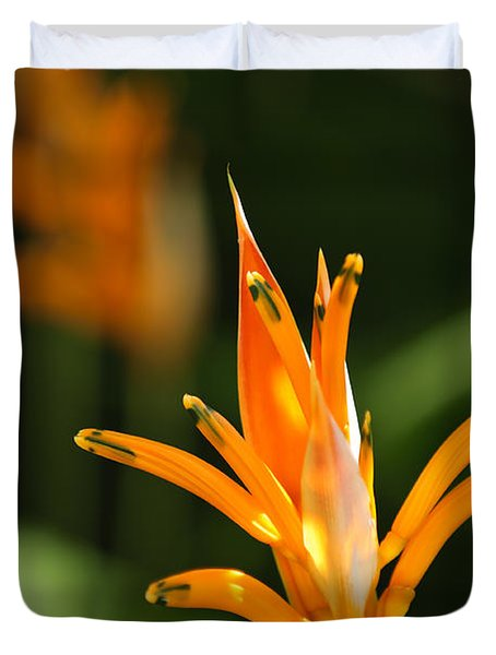 Tropical Orange Heliconia Flower Duvet Cover by Elena Elisseeva