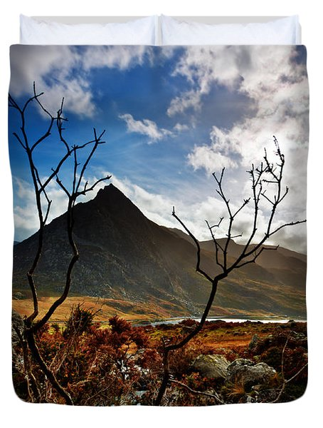 Tryfan And Tree Duvet Cover