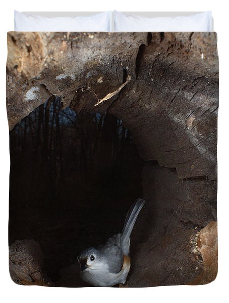 Tufted Titmouse In A Log Duvet Cover