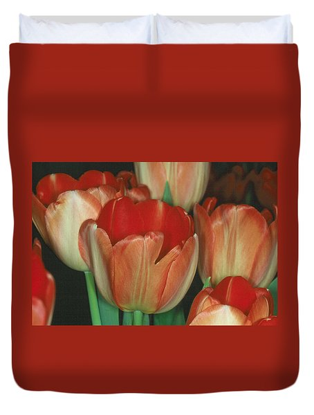 Tulip 1 Duvet Cover by Andy Shomock