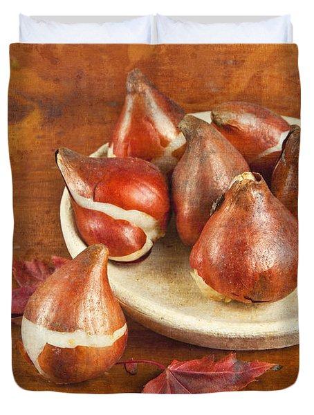 Tulip Bulbs Brocade Duvet Cover by Verena Matthew