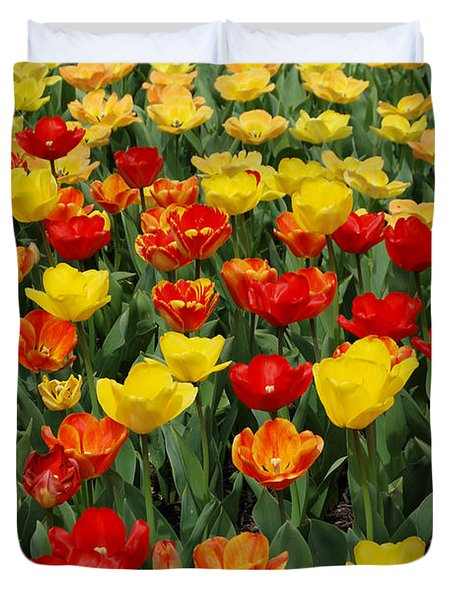 Duvet Cover featuring the photograph Tulips by Eva Kaufman