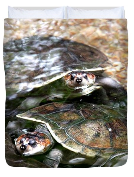 Turtle Two Turtle Love Duvet Cover