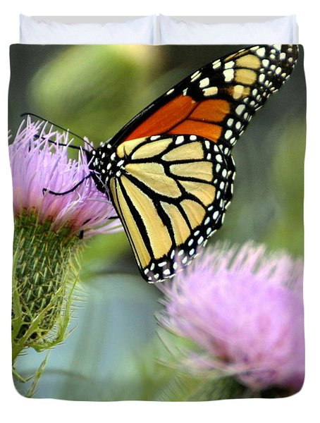Twin Thistle Butterfly Duvet Cover by Marty Koch
