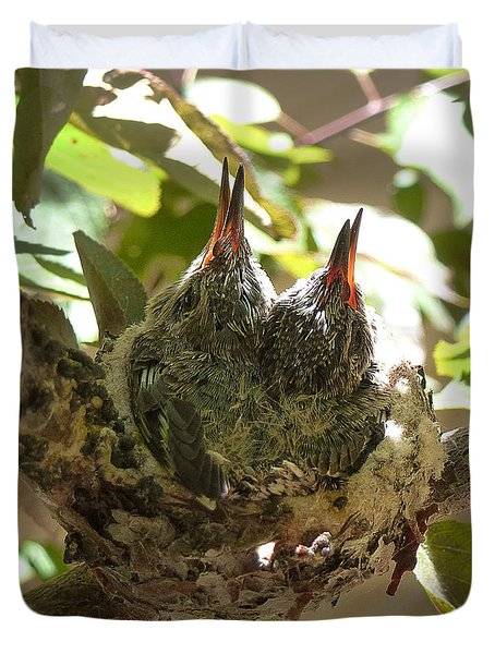 Two Hummingbird Babies In A Nest 3 Duvet Cover by Xueling Zou