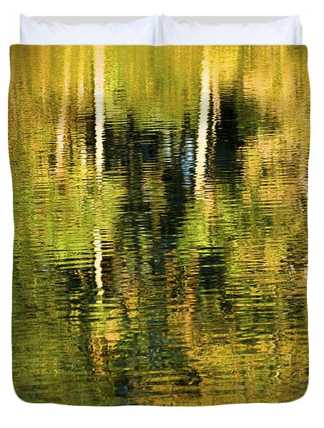 Two Palms Reflected In Water Duvet Cover by Rich Franco