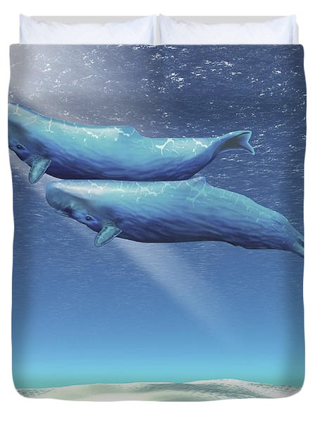 Two Sperm Whales Near The Surface Duvet Cover by Corey Ford