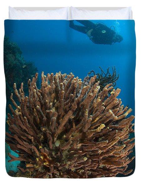 Unidentified Species Of Sponge Duvet Cover by Steve Jones