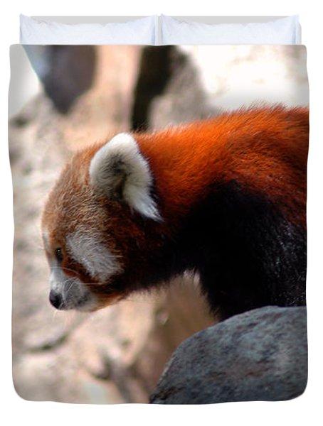 Valley Of The Red Panda Duvet Cover by LeeAnn McLaneGoetz McLaneGoetzStudioLLCcom