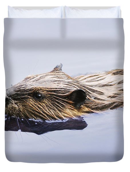 View Of Beaver, Chaudiere-appalaches Duvet Cover by Yves Marcoux