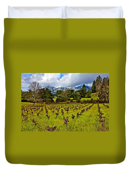 Vineyards And Mt St. Helena Duvet Cover by Garry Gay