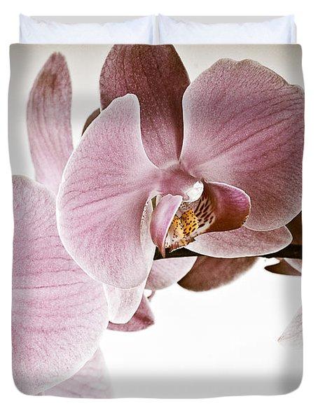 Vintage Orchid Duvet Cover