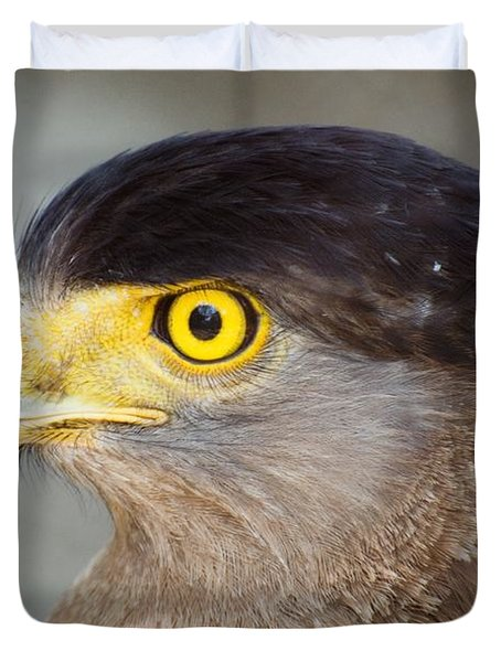 Duvet Cover featuring the photograph Waiting For Prey  by Fotosas Photography