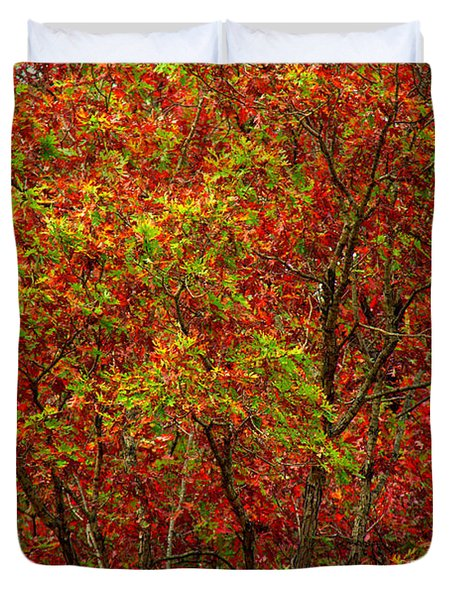Wall Of Red Duvet Cover by Ed Smith