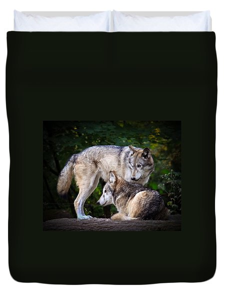 Watching Over Duvet Cover by Steve McKinzie