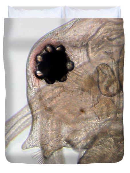 Water Flea Daphnia Magna Eye Duvet Cover by Ted Kinsman