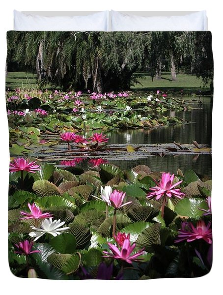 Water Lilies In The St. Lucie River Duvet Cover by Sabrina L Ryan