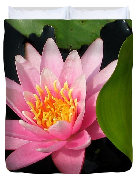 Water Lily 2 Duvet Cover by Eva Kaufman