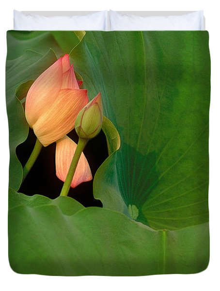 Water Lily Duvet Cover by Mark Greenberg