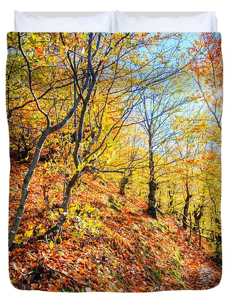 Way To The Chapel Duvet Cover by Evgeni Dinev